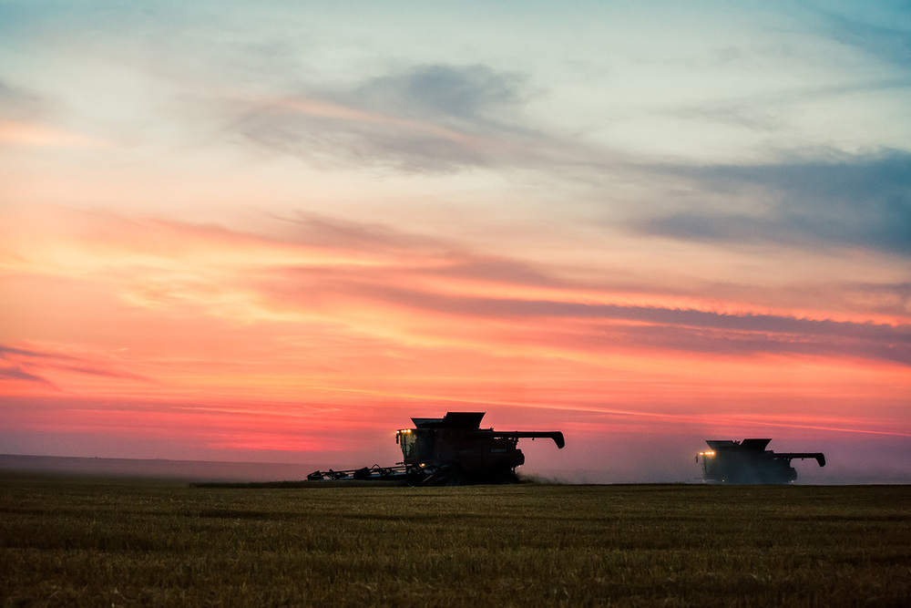 Agriculture Photography By Todd Klassy Photography
