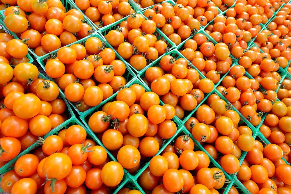 Totally Tomato
