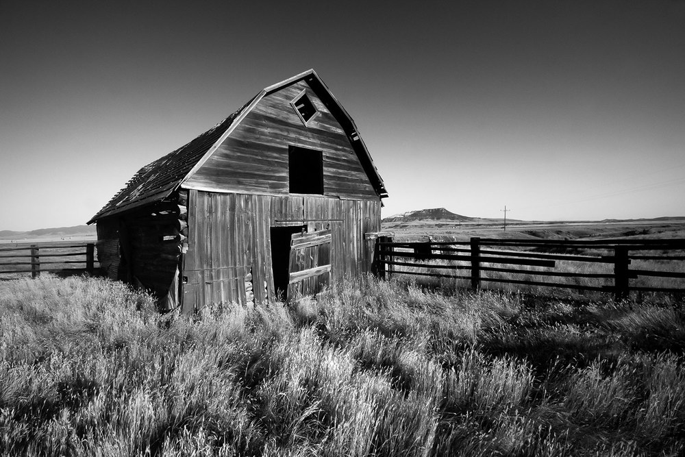 Agriculture Photography by Todd Klassy