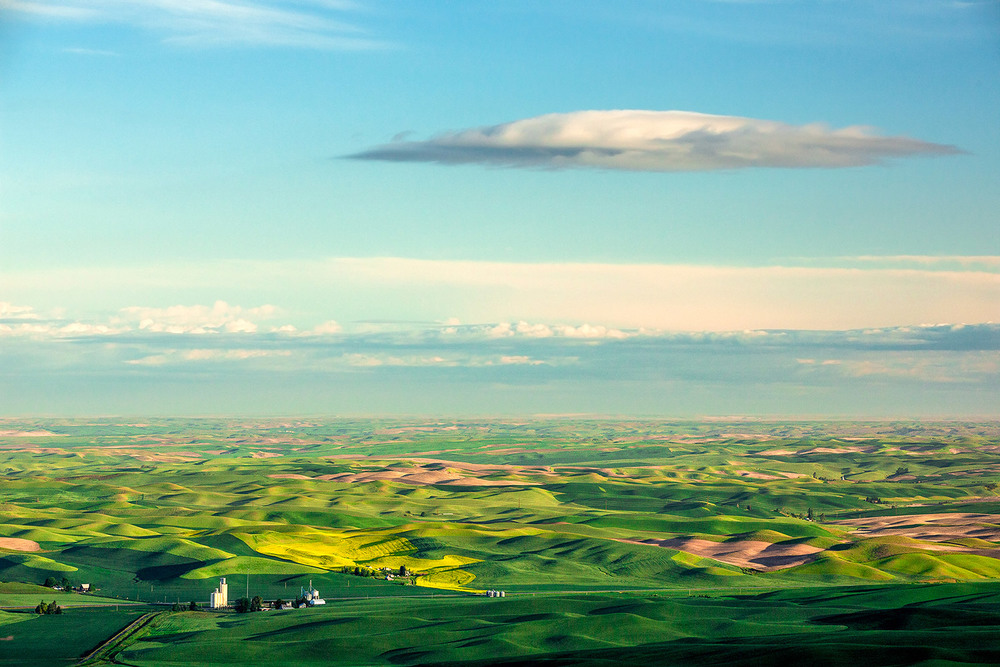 Palouse Point of View