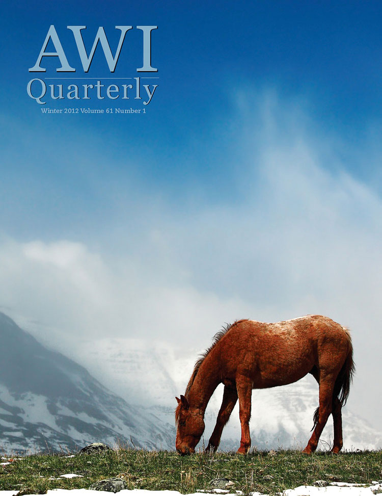 AWI Quarterly
