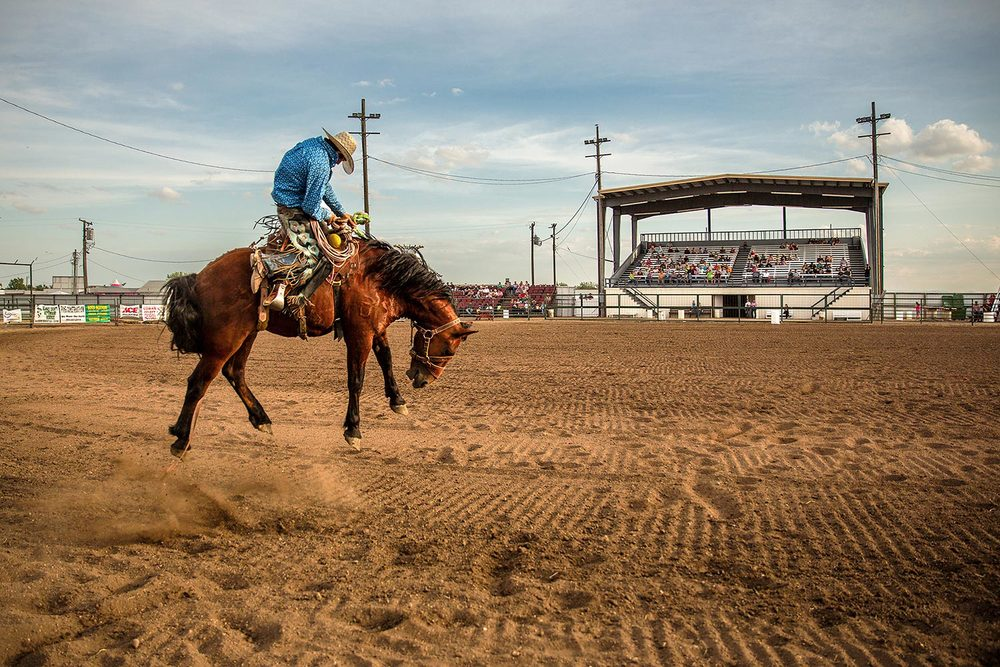 A horse tries bucking off its rider in a rodeo at the Blaine County Fair in Chinook, Montana. → Buy a Print