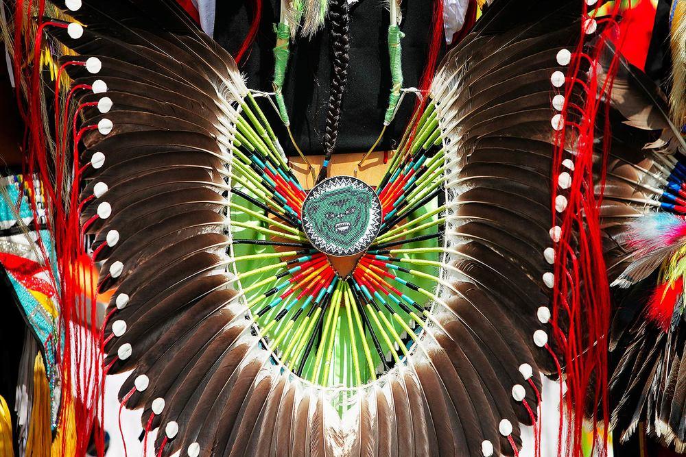 Powwow Feathers