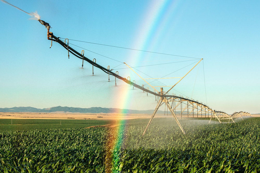 Rainbow Irrigation