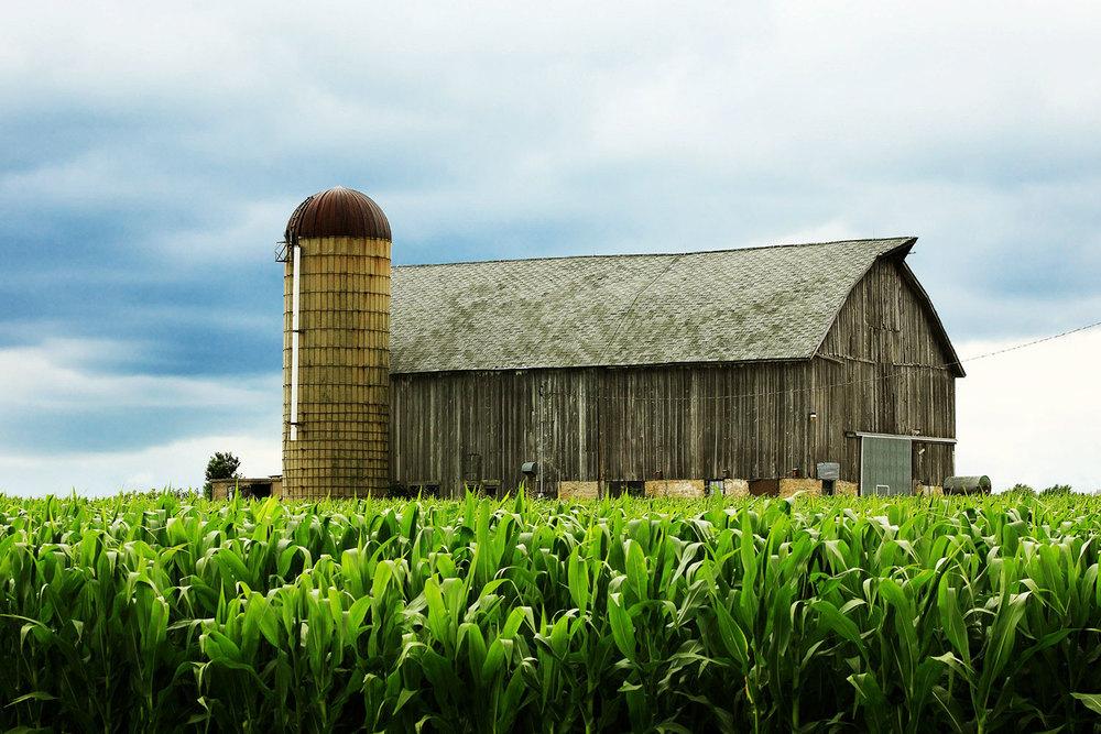 Weathered Old Barn