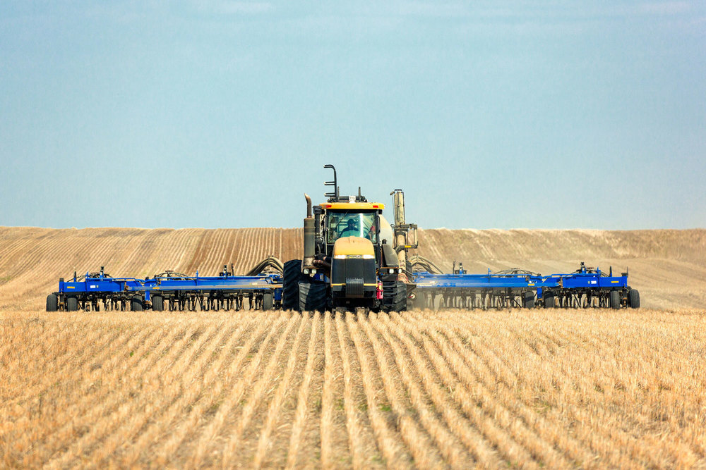 An example of no-till seeding of wheat in a field using a Caterpillar tractor south of Rudyard, Montana. → License Photo