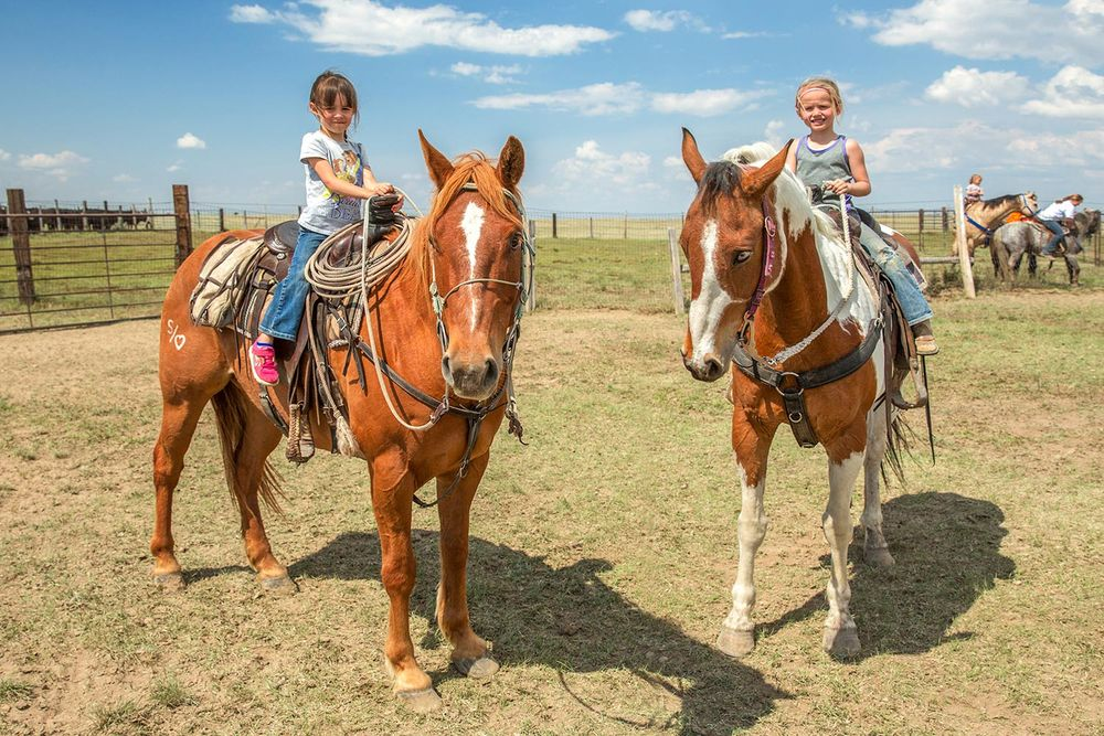 A couple of young cowgirls riding horses near Chinook, Montana...and making little girls in the city who want a pony very jealous. → License Photo