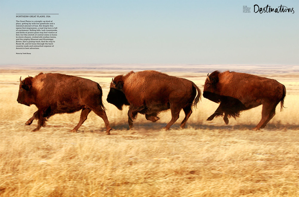 My photo of Montana buffalo racing across the plains was licensed for a two-page spread in a New Zealand travel publication called Destinations magazine. This is a tearsheet of that photo published here.