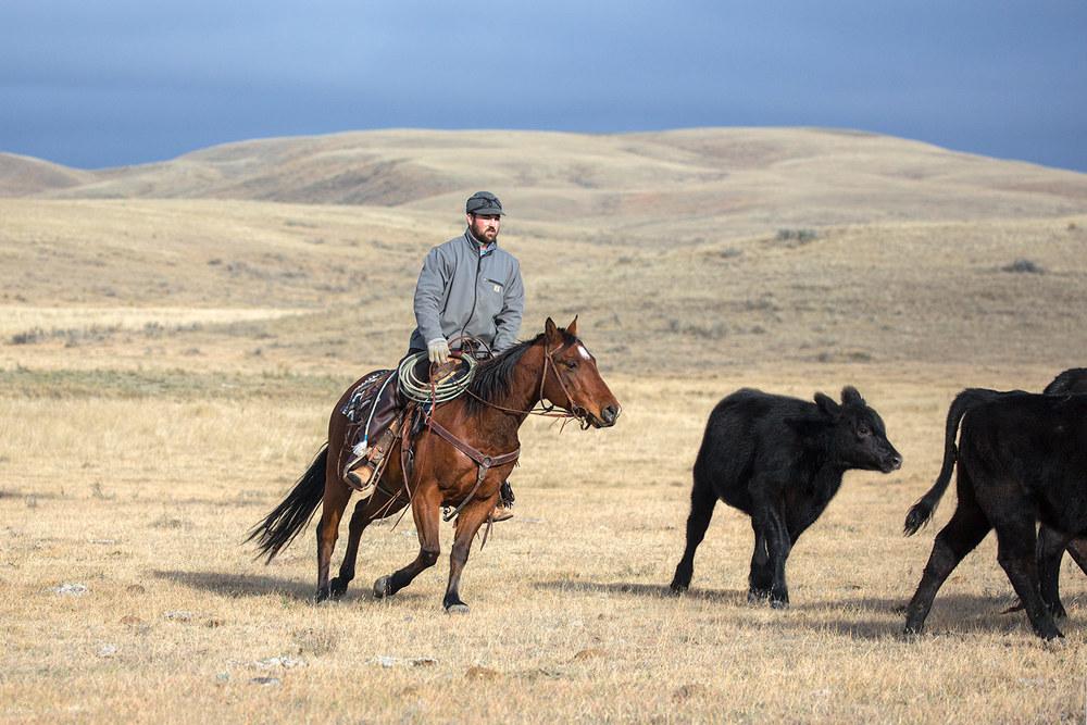 Stormy Kromer Kowboy