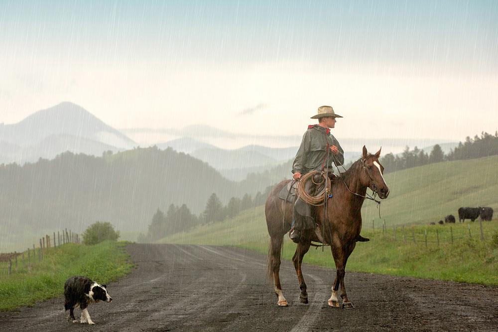 A cowboy rides horseback while braving the rain near Lloyd, Montana.  → Buy a Print