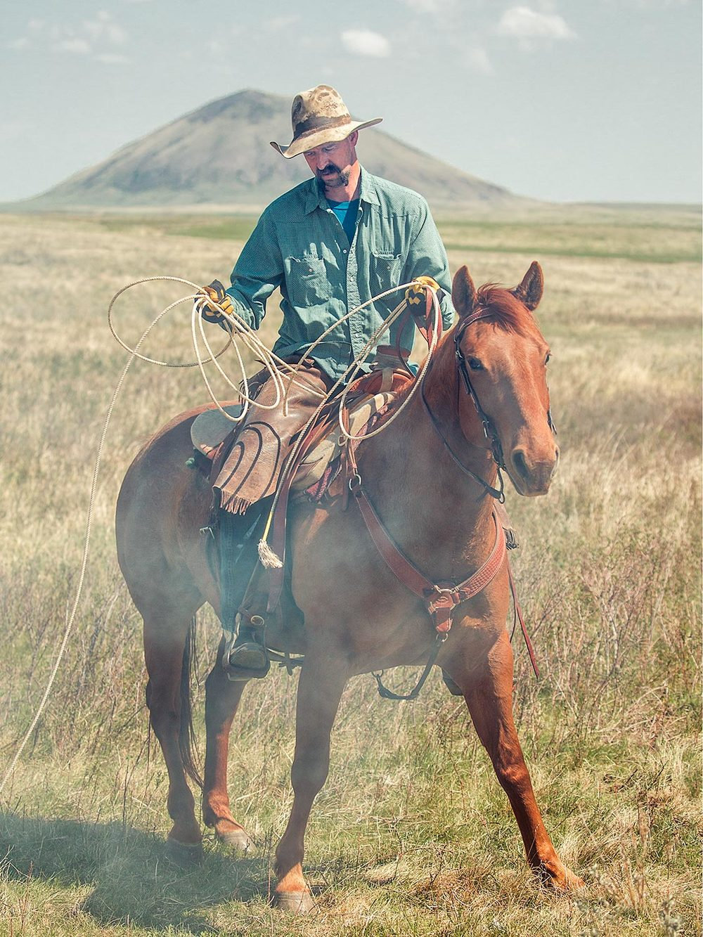 Smokey Cowboy