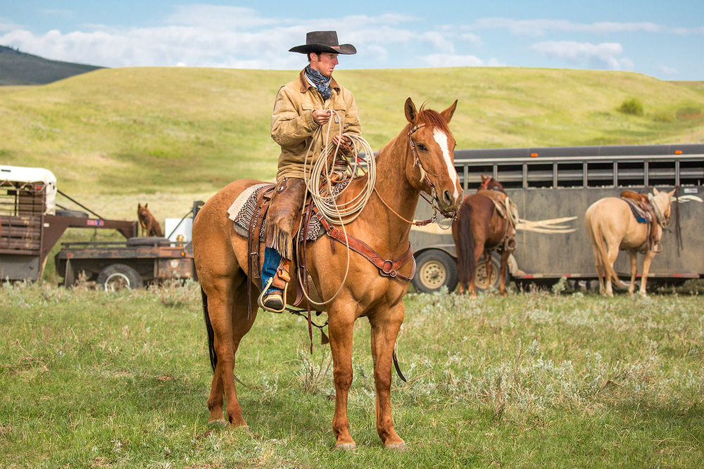 Cowboy Tall