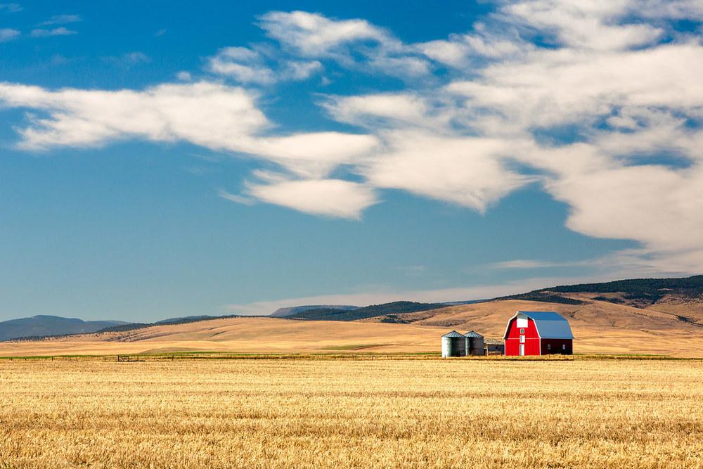 Prairie Red
