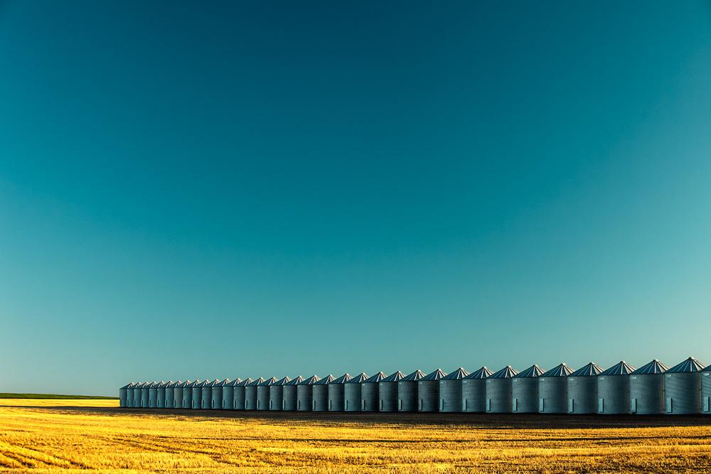 A long line of grain bins on a wheat farm near Kremlin, Montana.→ Buy a Print
