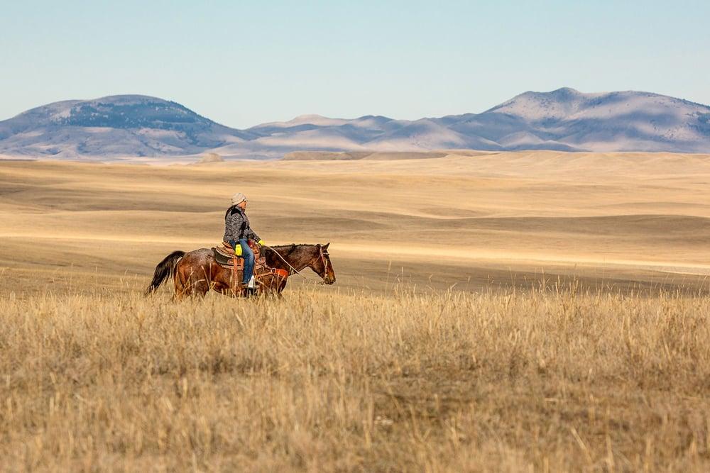 Ride Across the Plains