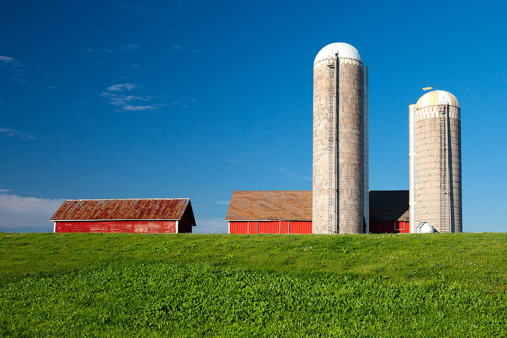 New Glarus Dairy Farm