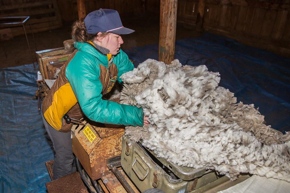 Baling Wool