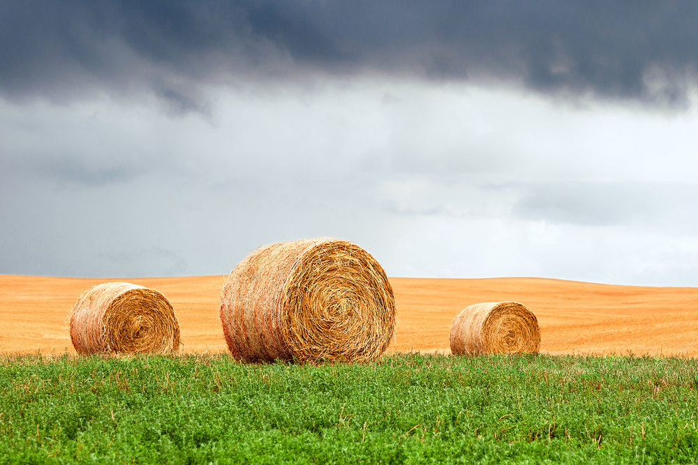 Bales and Layers