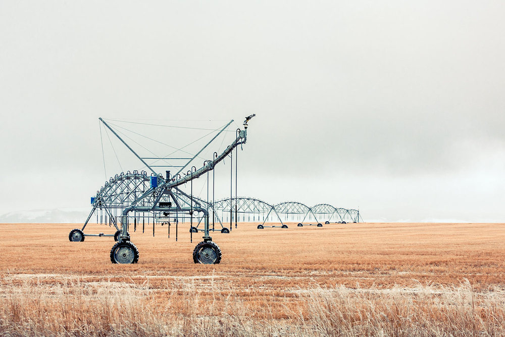 A center pivot irrigation apparatus sits idle in a wheat field during winter near Fairfield, Montana. → License Photo