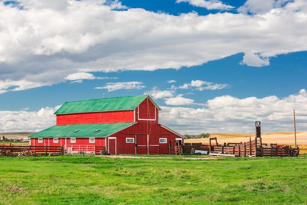 A beautiful red barn on a sunny summer day outside of Denton, Montana.→ Buy a Printor License Photo