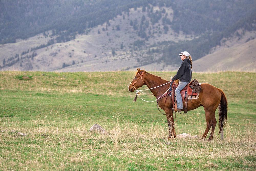 A Cowgirl Waits