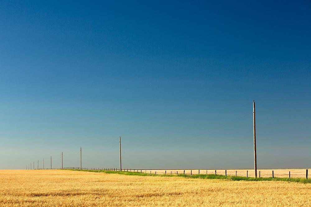 Abundant Plains