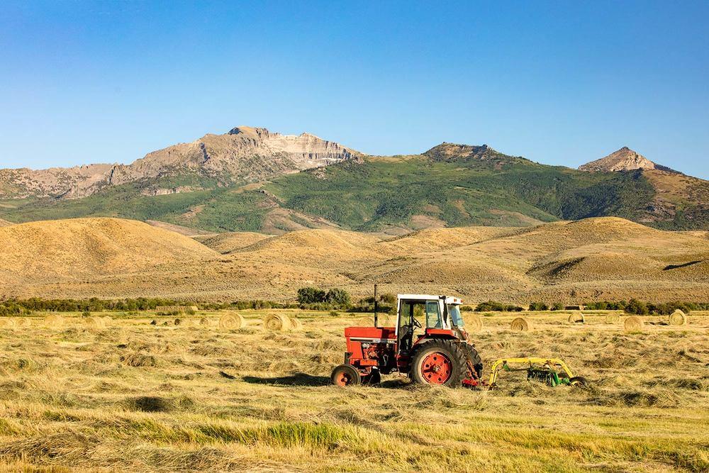 When Tractors Were Good