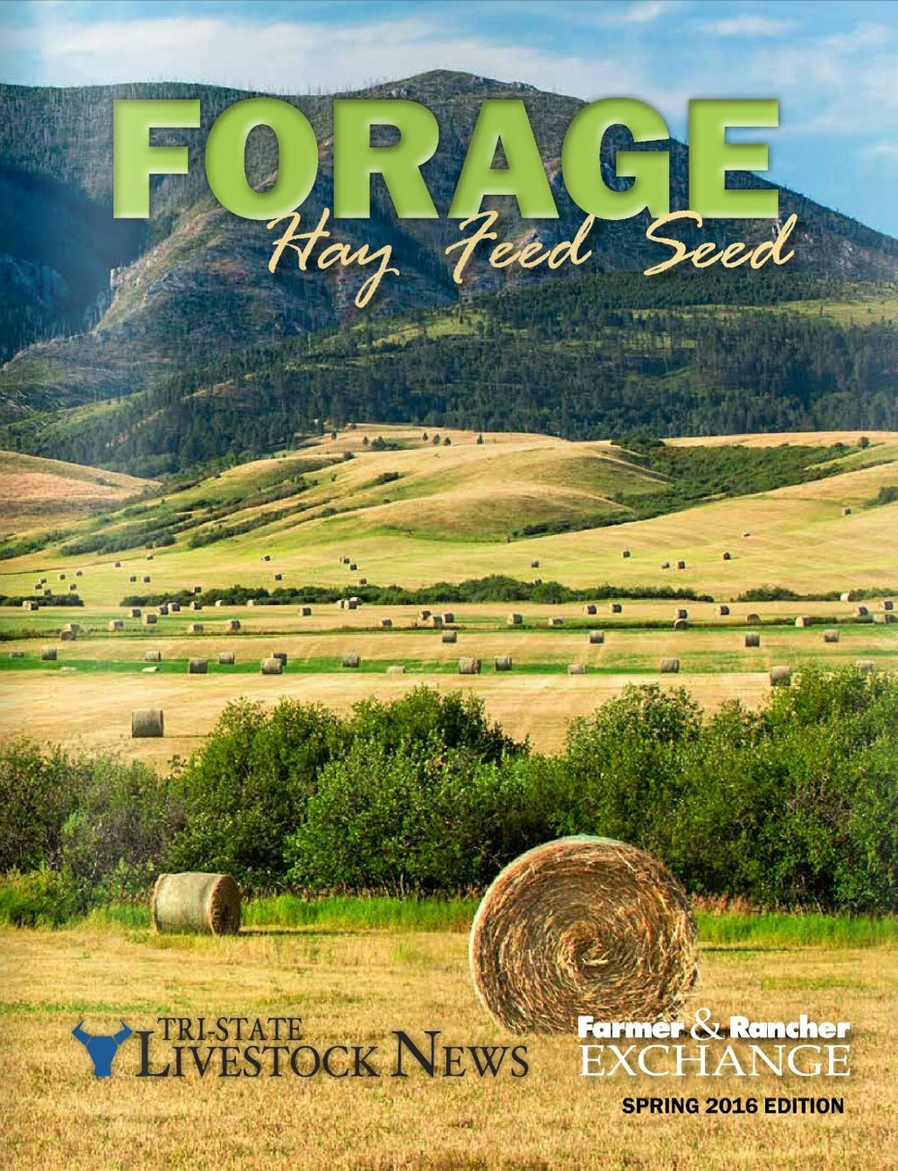 My photo of round bales near the Judith Mountains outside of Lewistown, Montana appears on the cover of the latest issue of Forage Magazine as seen here.