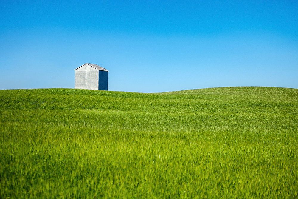 A metallic grain bin sits alone in a large field of wheat in the foreground and brilliant blue sky behind it on a rural farm near Fort Benton, Montana.   → Buy a Print    or    License Photo