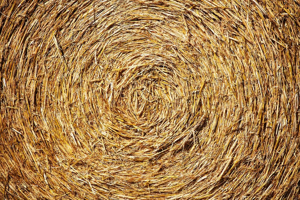 Circle of Straw