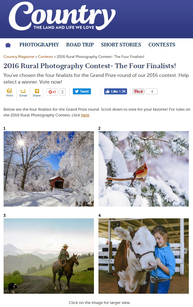 Cowboy Photo a Finalist in Country Magazine 2016 Rural Photography Contest