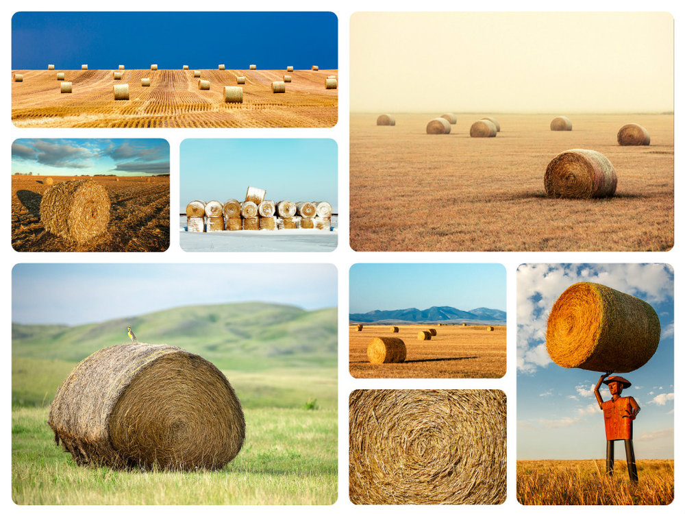 Photos of Round Bales of Hay and Straw