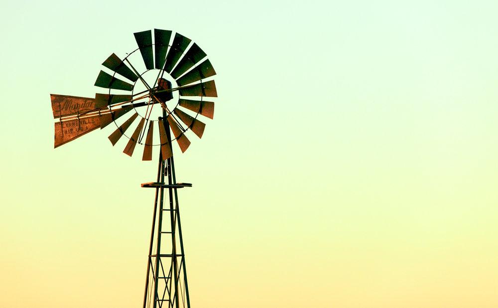 Windmill Tint