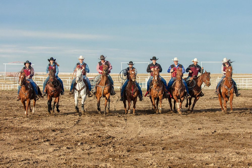 Members of the MSU-Northern rodeo team ride their horses together inside the rodeo ring at Box Elder, Montana.   → License Photo