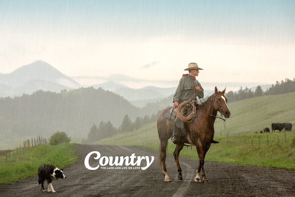 My photo of a cowboy rounding up cattle in the rain was the grand prize winner in Country magazine's 2016 Country Life Photo Contest. → Buy a Print or License Photo