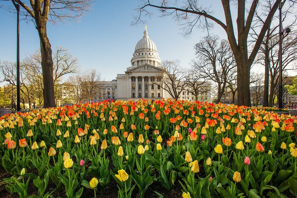 Madison Spring
