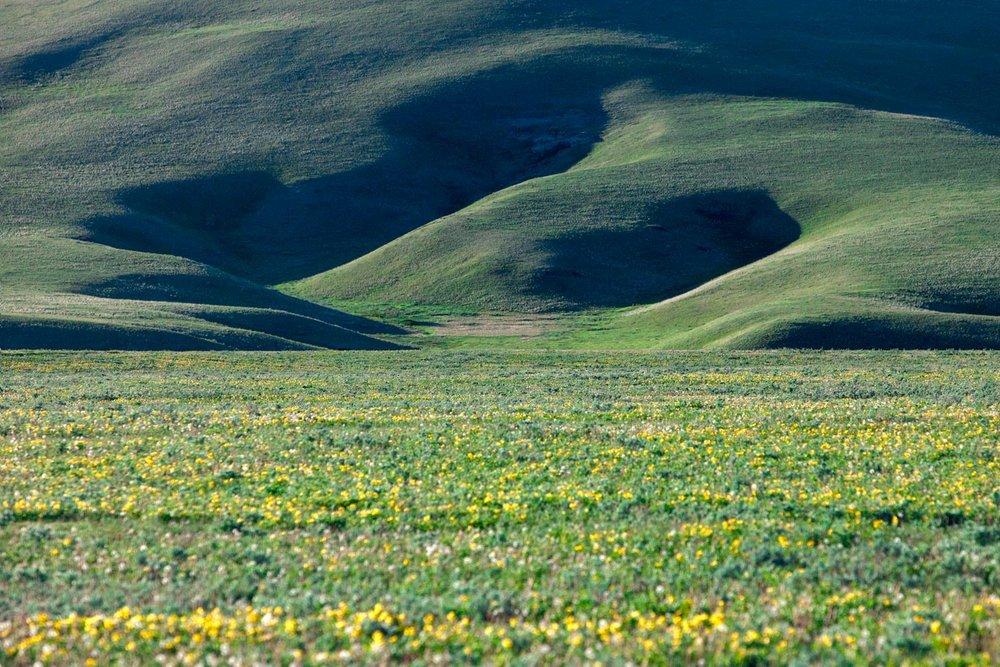 Mountain and Plain