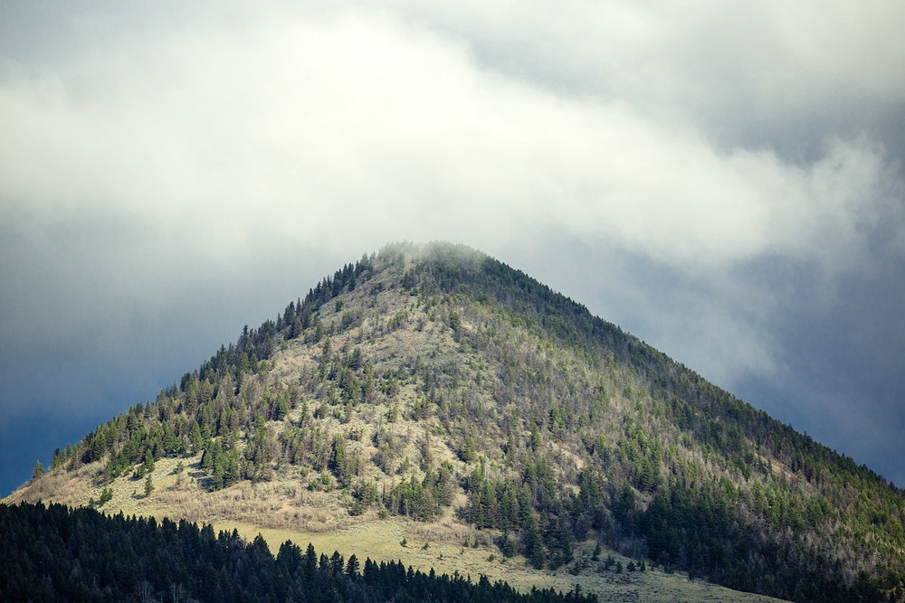Timber Butte
