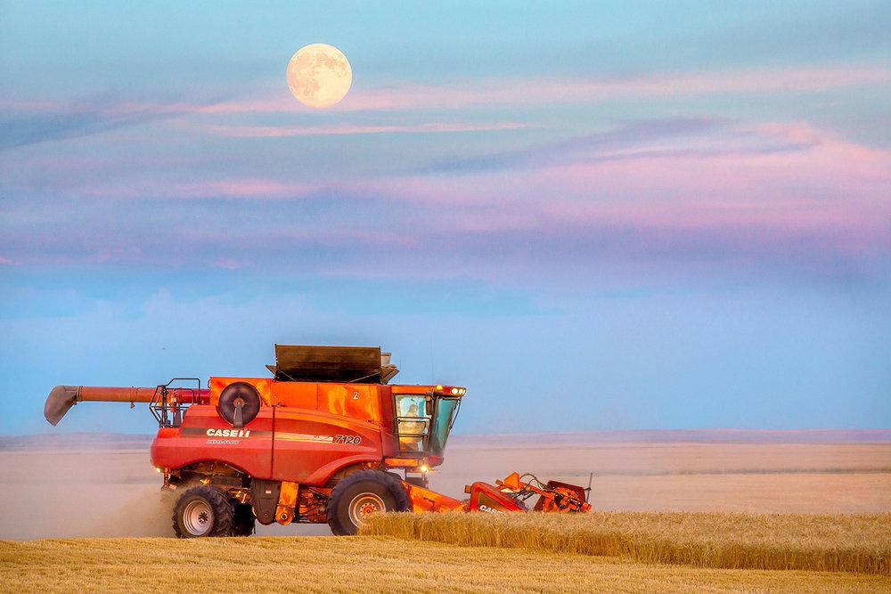 Harvest Supermoon