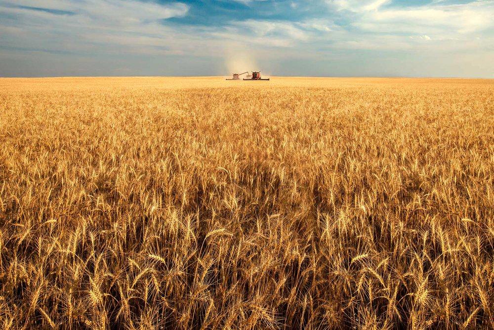 America's Breadbasket