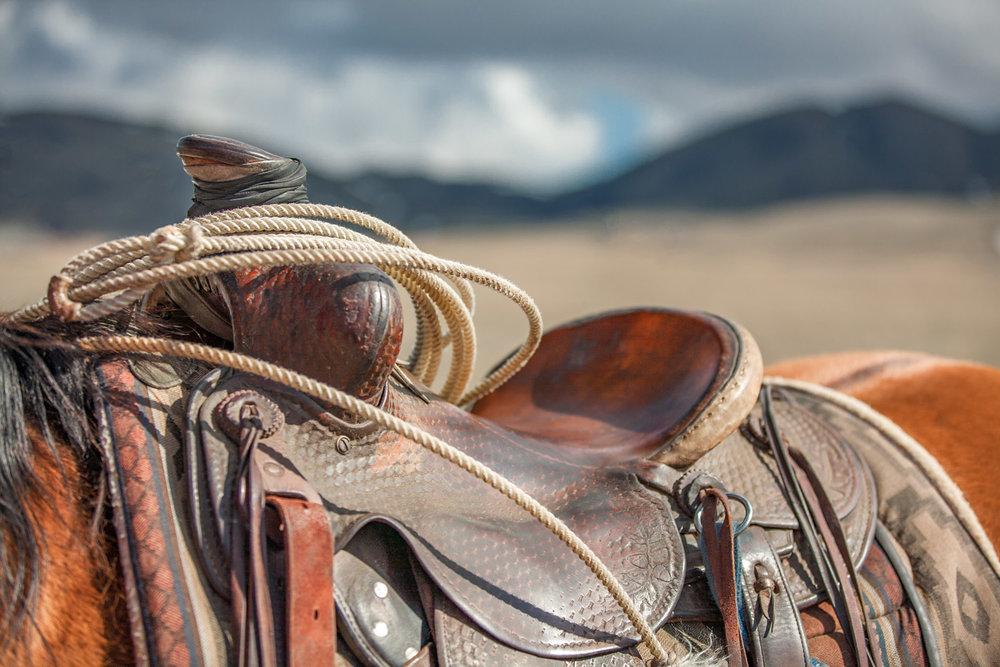 Saddle Top