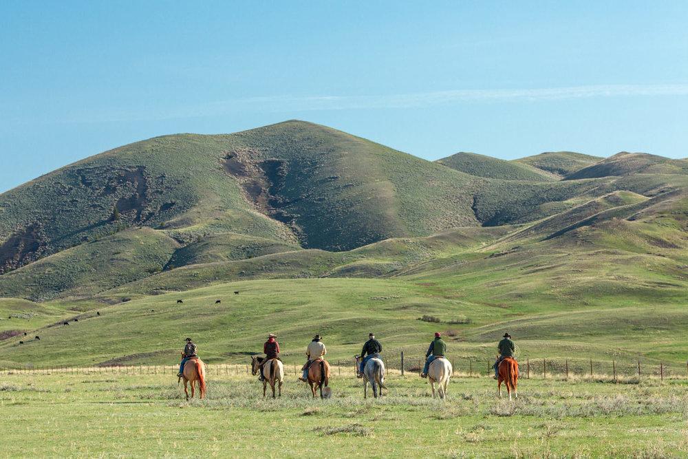 Cowboy Line
