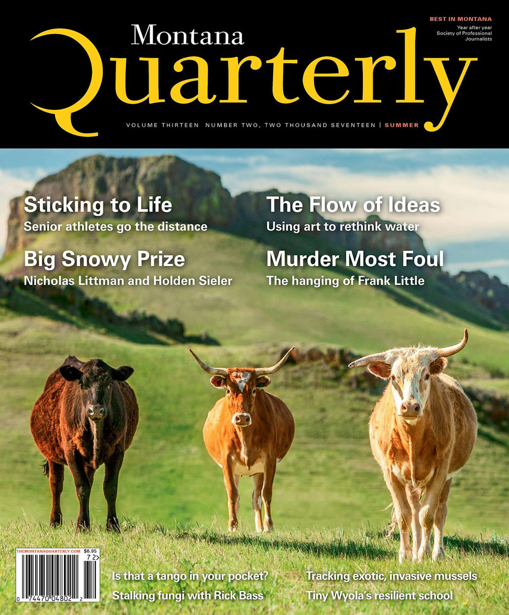 Cattle Photography on Cover of Montana Quarterly Magazine by Todd Klassy