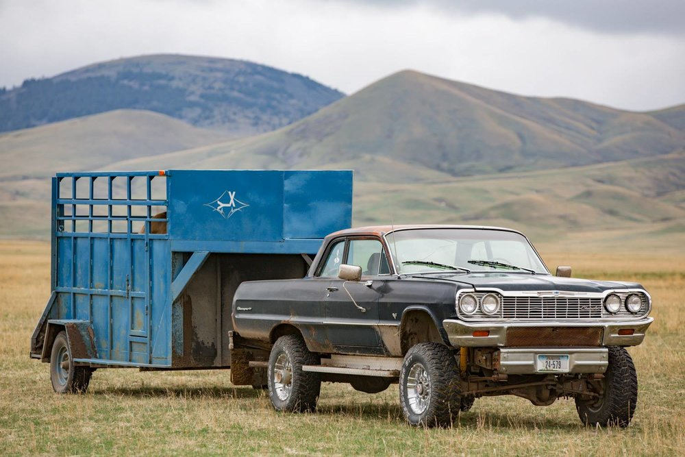 Photo-of-an-Odd-Automobile-Pulling-a-Horse-Trailer