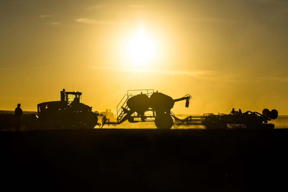 A silhouette of farm equipment seeding wheat on a farm north of Chinook, Montana.   → License Photo