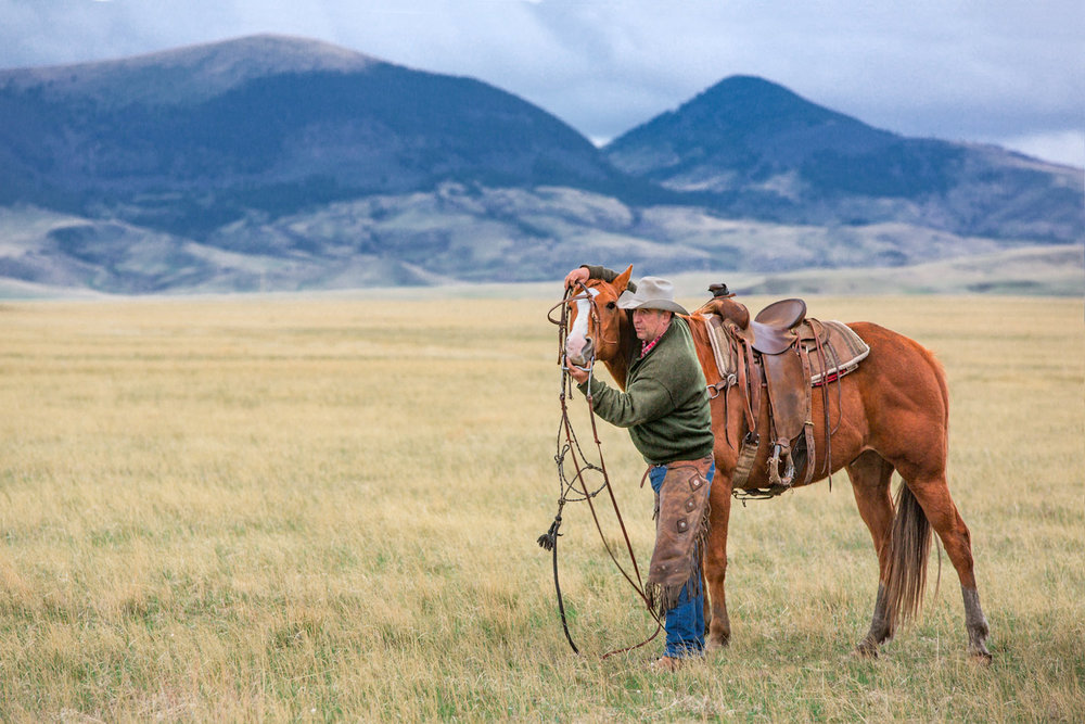 Cowboy-Putting-Bridle-on-Horse.jpg