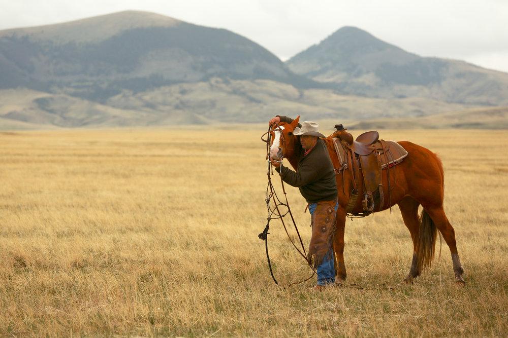 Older-Version-Cowboy-Dressing-Horse.jpg