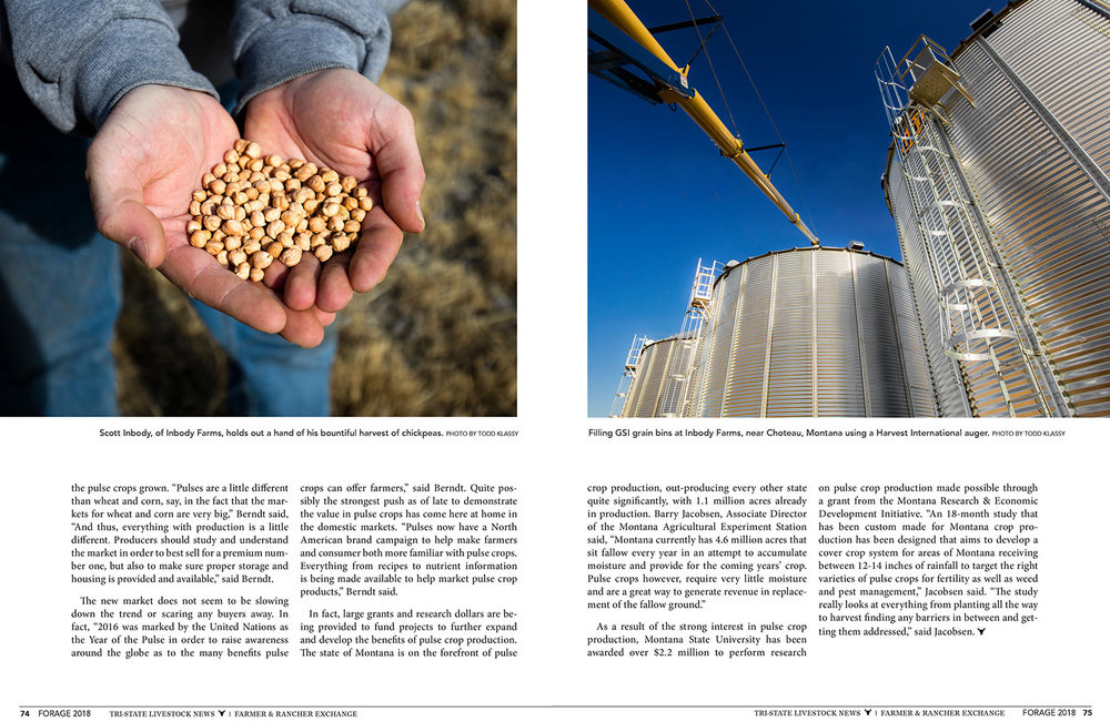 Forage-Magazine-A-New-Pulse-Story-201804-D.jpg