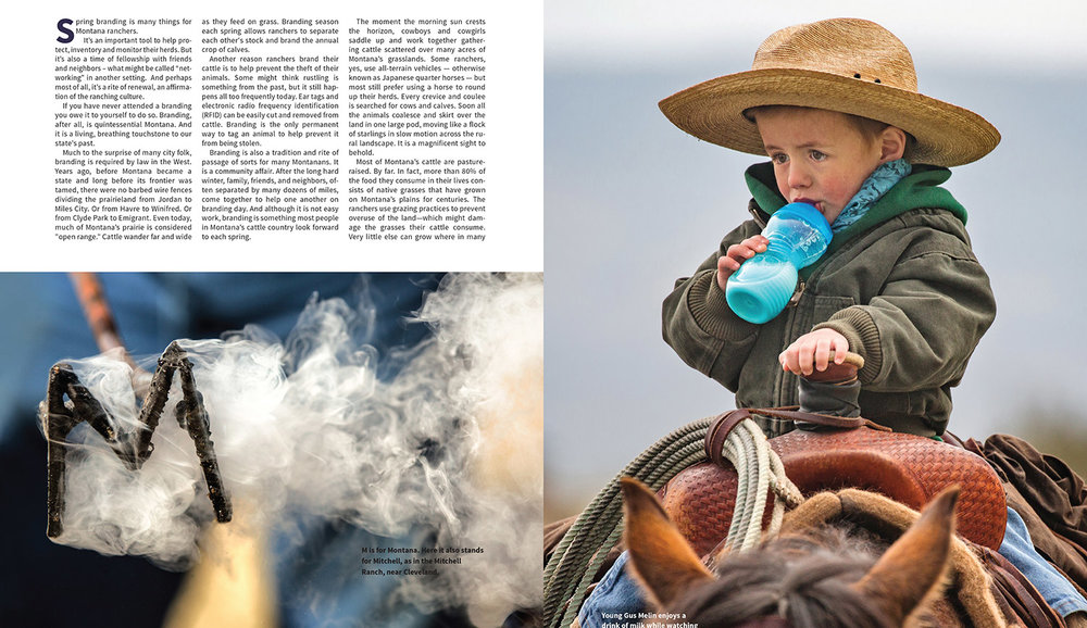 Montana-Magazine-Branding-Article-20180418-Small-2.jpg