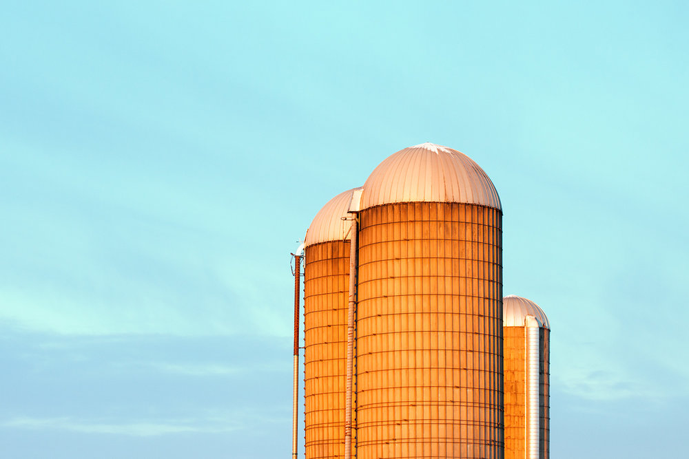 Early Monring Silos